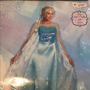 Frozen Elsa Adult Costume